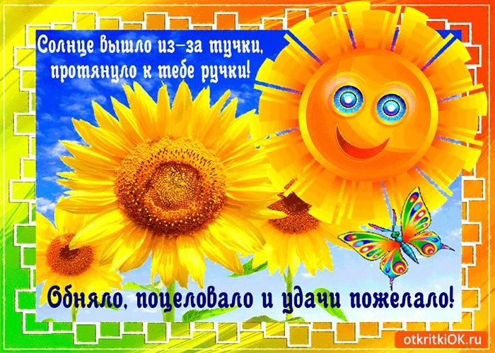 Коллегам, тебе солнце открытки