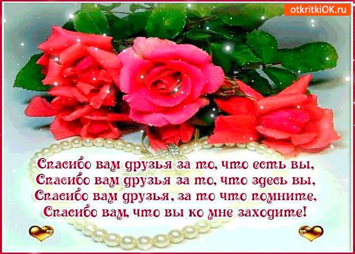 сочетаются спасибо моя дорогая за поздравление перевод на английский две пряди