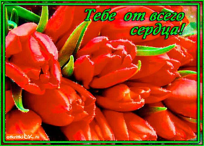 Сайт открытку, картинки тюльпаны с надписью для тебя