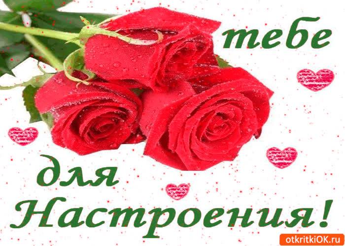 Картинка тебе розы для настроения