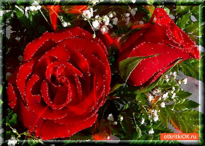 Картинка ты прекрасна словно роза