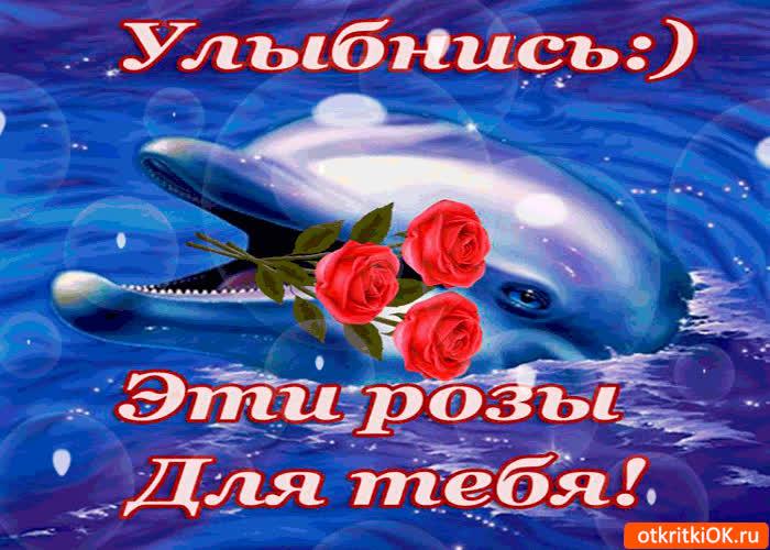 Картинка улыбнись! эти розы для тебя