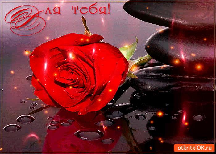 Картинка волшебная роза эта для тебя