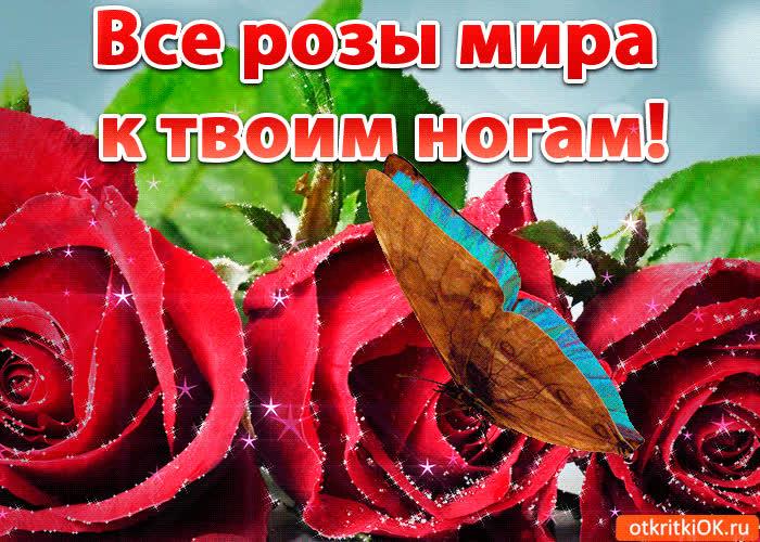 все цветы к твоим ногам фото только