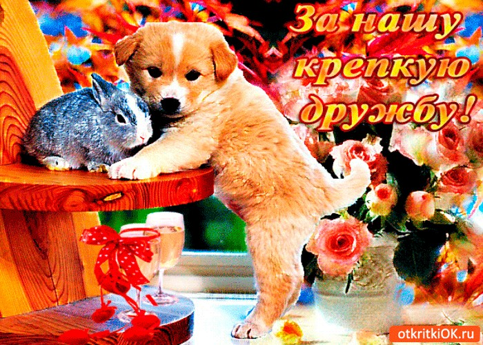 Муз открытка о дружбе друзей, картинки