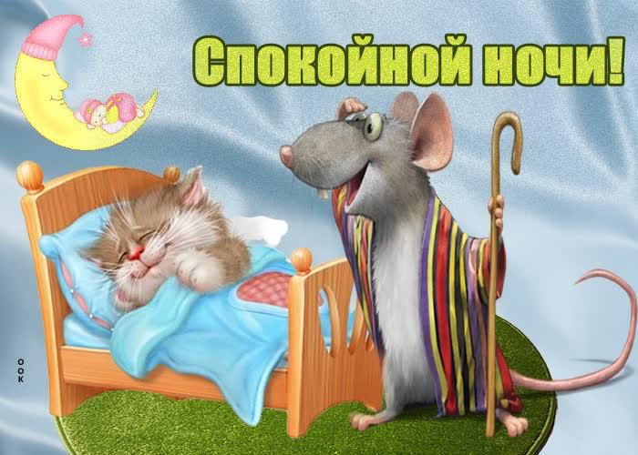 Картинка забавная картинка спокойной ночи
