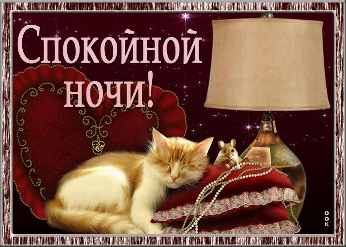 Картинка замечательная картинка спокойной ночи с кошкой