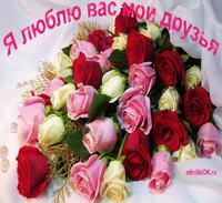 Открытка красивые цветы