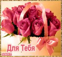 Картинка красивые цветы друзьям