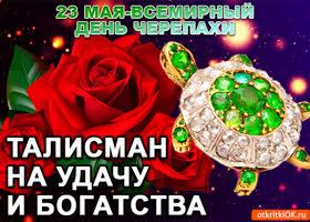 Открытка 23 мая всемирный день черепахи