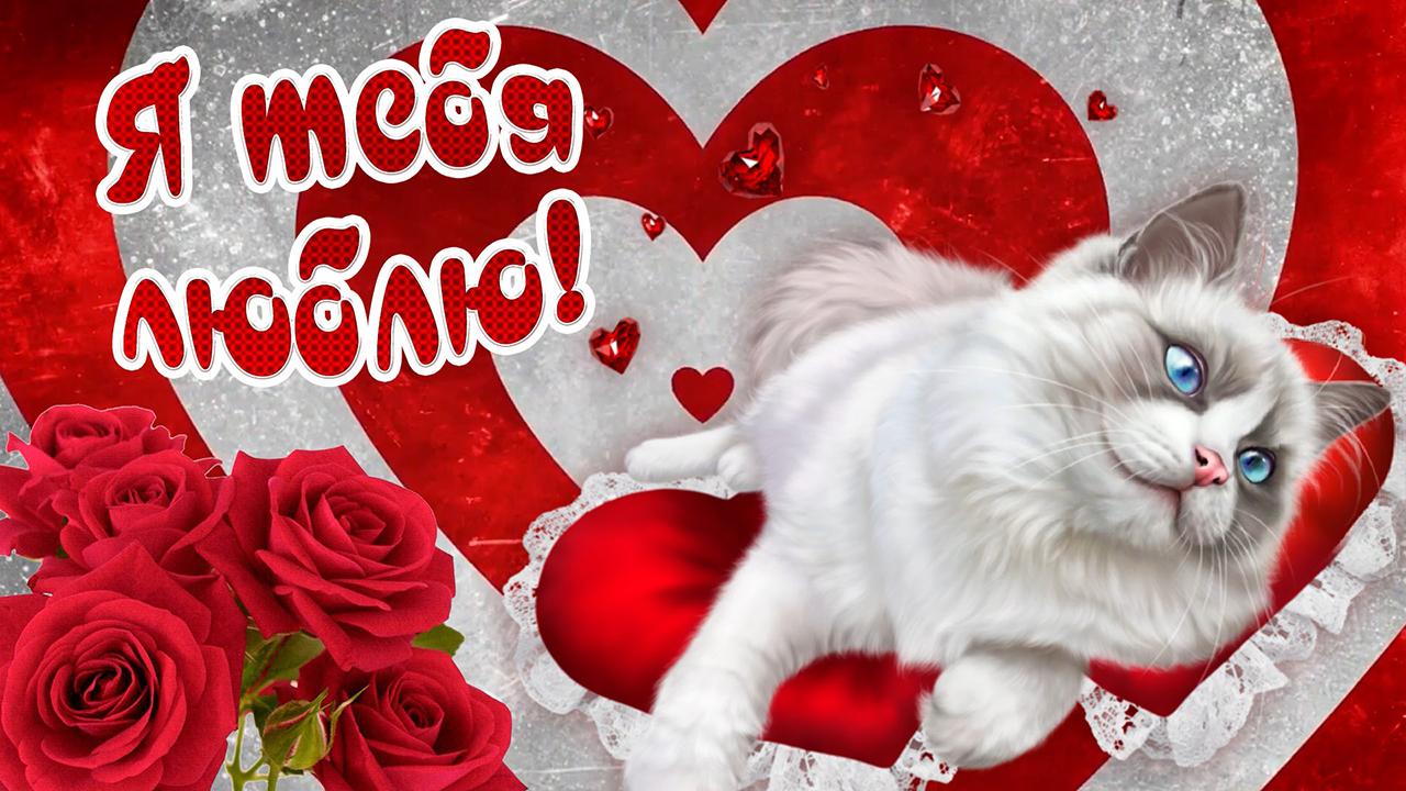 Картинка моя любовь, ты — дар с небес. очень красивые стихи о любви! видео открытка с милым голосом