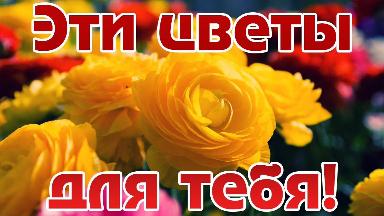 Картинка поздравление с цветами! букетик для тебя. музыкальная открытка.