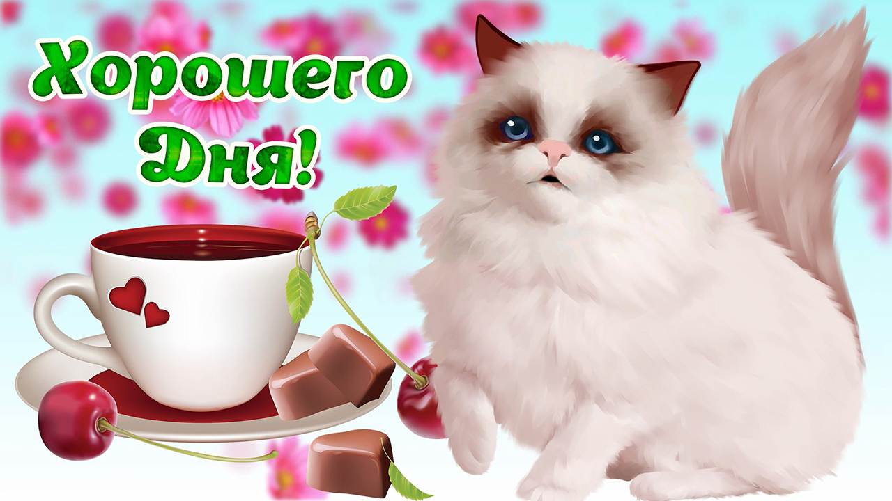 Картинка чудесного дня! желаю позитивного , радостного и удачного дня! милый голос