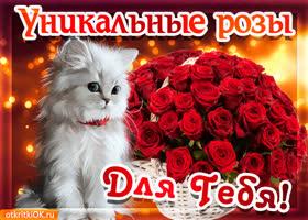 Открытка анимационная открытка корзина роз
