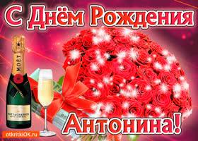 Картинка антонина с праздником тебя