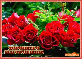 Картинка букет роз для хорошего настроения