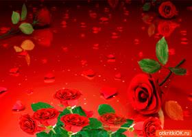 Картинка букет роз на 8 марта