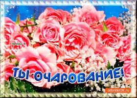 Открытка букет роз очаровашке