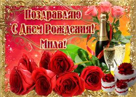 Открытка букет роз в твой день рождения, мила