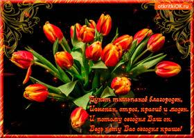 Картинка букет тюльпанов благороден