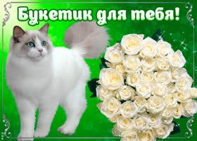Картинка букетик белых роз для тебя