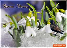 Картинка чудесная весна пришла
