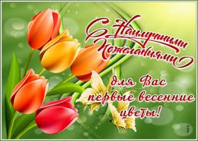 Открытка чудесная открытка с тюльпанами