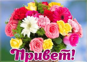 Открытка чудесной женщине самые чудесные цветы