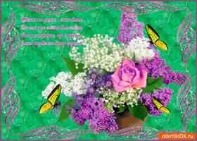 Картинка цветы на фото - это класс