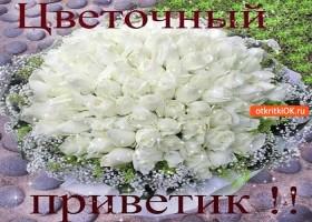 Открытка цветочный тебе приветик