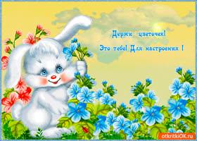 Открытка цветок тебе для настроения