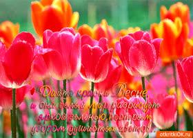 Открытка дайте краски весне