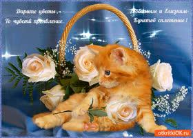 Открытка дарите цветы любимым и близким