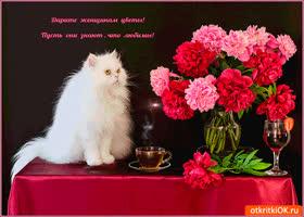 Картинка дарите женщинам цветы