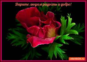 Открытка дарите людям радость и добро