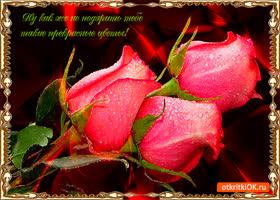 Картинка дарю тебе прекрасные цветы