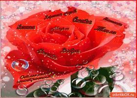 Открытка дарю тебе розу пожеланий