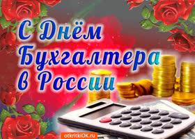 Картинка день бухгалтера в россии 21 ноября