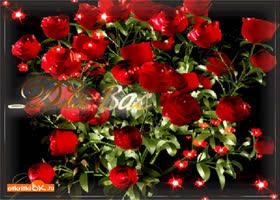 Открытка для вас розы