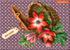 Открытка для тебя корзина необычных цветов