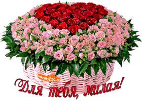 Картинка для тебя милая цветы