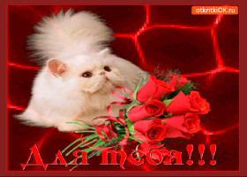 Картинка для тебя милый букетик роз