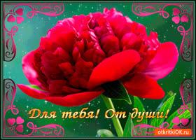 Картинка для тебя от души цветок