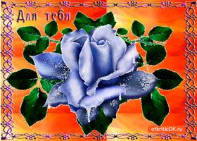 Открытка для тебя роза синяя