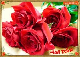 Картинка для тебя розы красные