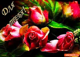 Картинка для тебя розы от меня