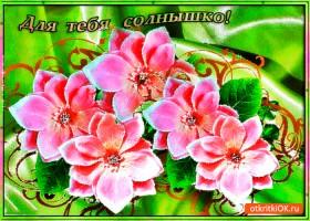 Картинка для тебя солнышко красивые цветы