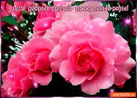 Открытка для добрых друзей прекрасные розы
