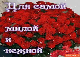 Картинка для самой милой и нежной букет роз