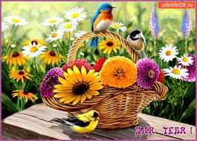 Картинка для тебя корзина цветов от меня